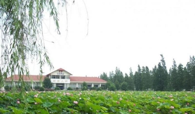 南京高淳迎湖桃源景点图片