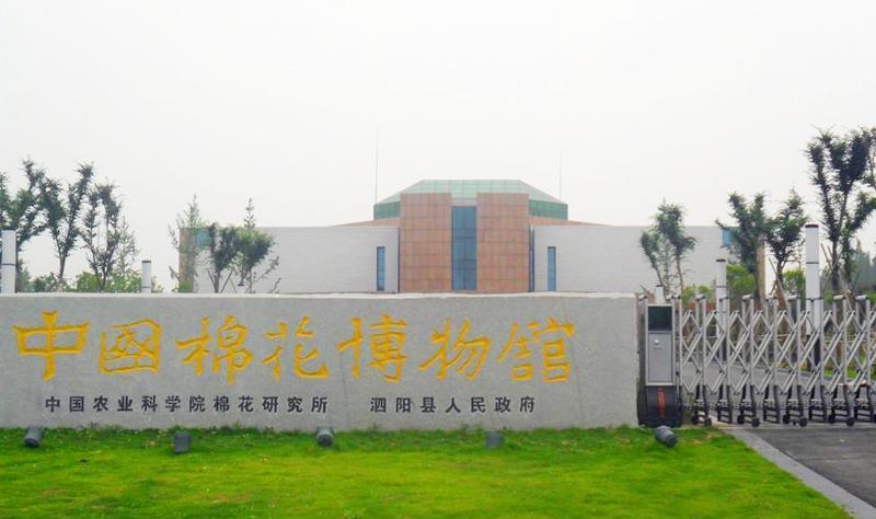 泗阳中国棉花博物馆景点图片