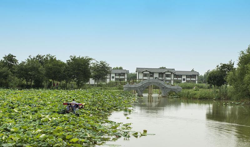 泗洪穆墩岛景点图片
