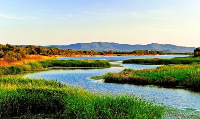 黑龙江东方红湿地国家级自然保护区