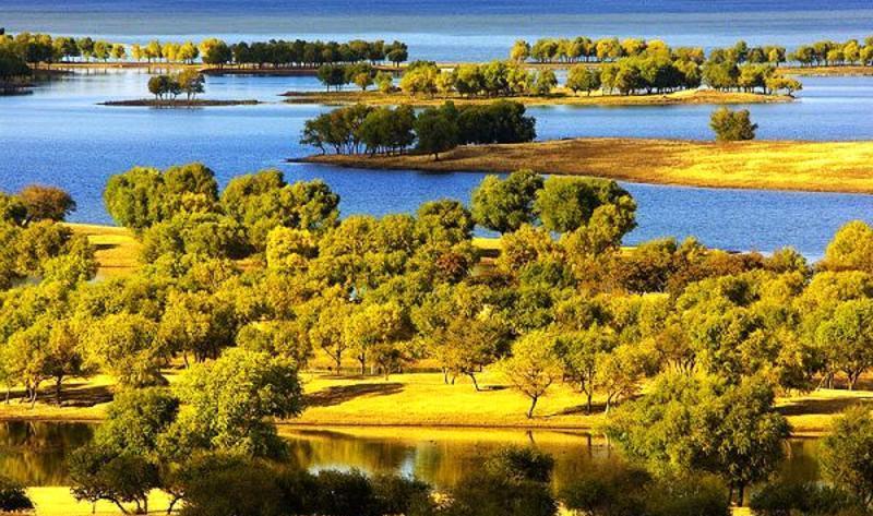 通榆向海国家级自然保护区