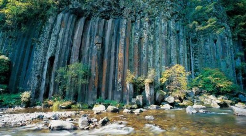 长白石林风