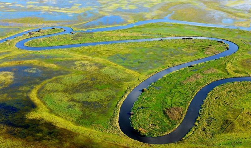 黑龙江挠力河国家级自然保护区