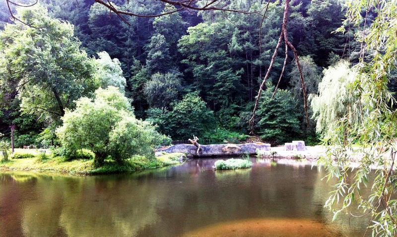 辽宁新宾和睦国家森林公园
