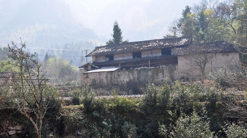 云和江南畲族风情村 之 坪垟岗村的图片和照片