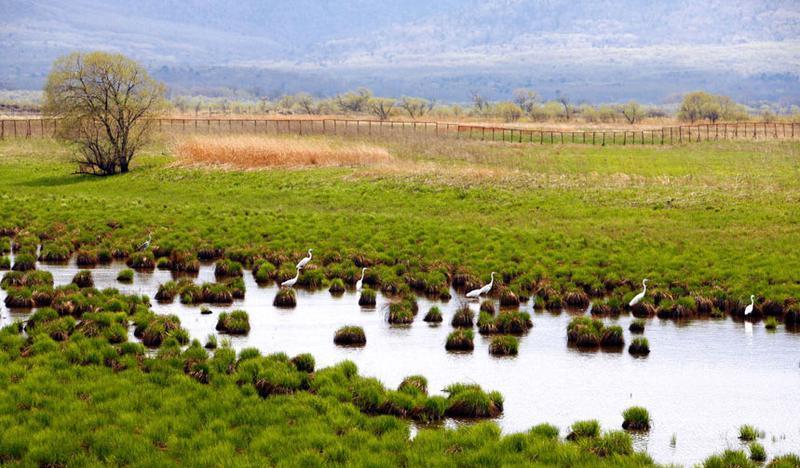 黑龙江三江国家级自然保护区