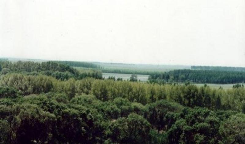齐齐哈尔青松狩猎场旅游风景图片