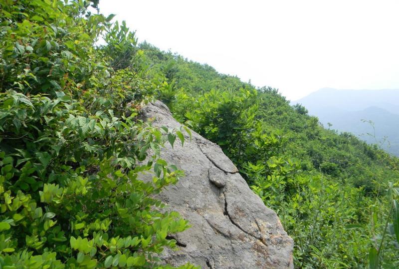 海城九龙川自然保护区 之 怪石嶙峋风景图片