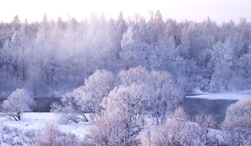 黑龙江红星湿地国家级自然保护区