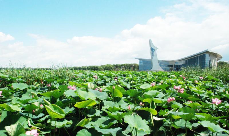 铁岭辽河博物馆景点图片