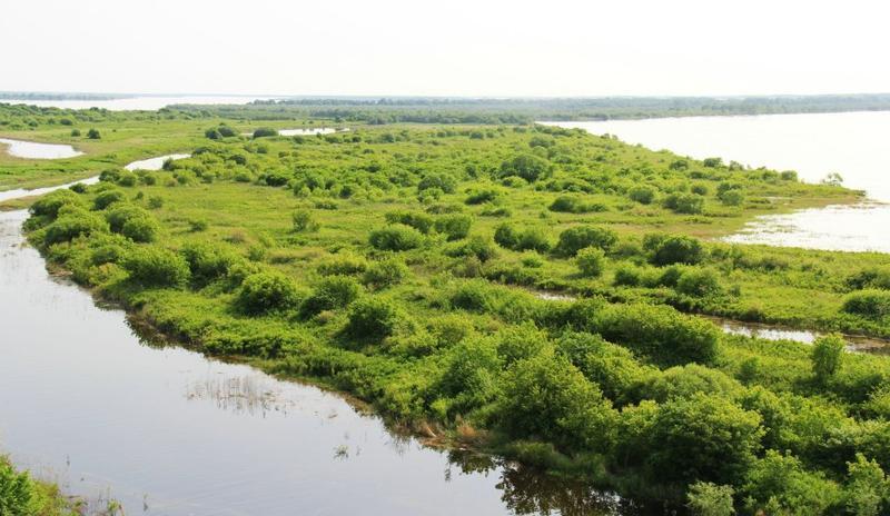黑龙江八岔岛国家级自然保护区
