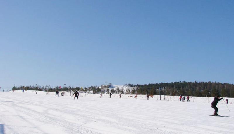 龙井马蹄山旅游度假区旅游风景图片