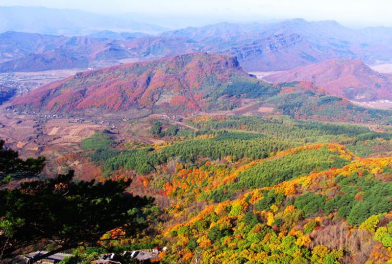天桥沟森林公园景点图片