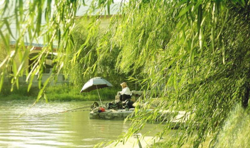 福清天生林艺园 之 碧波景区风景图片