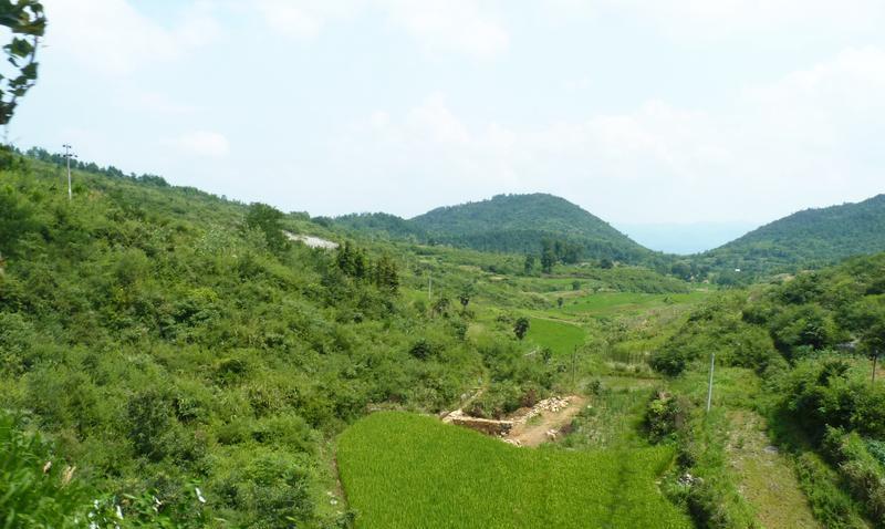 瑞昌秦山风景点图片