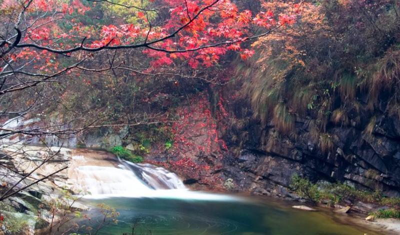 岳西鹞落坪国家级自然保护区