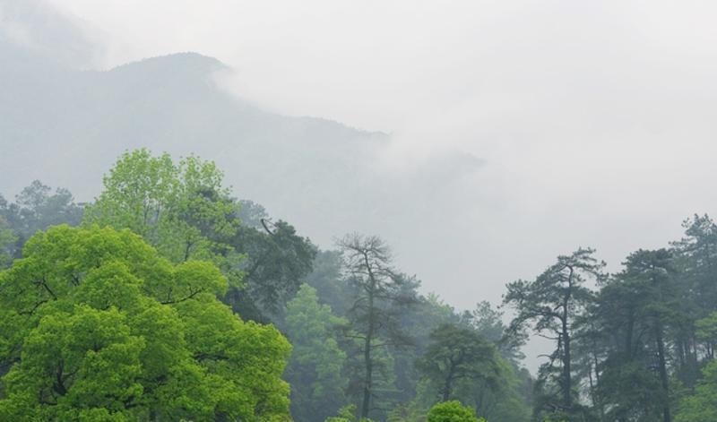 江西阁皂山