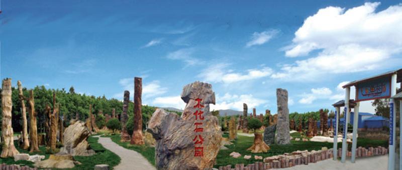 福清天生林艺园 之 木化石公园风景图片