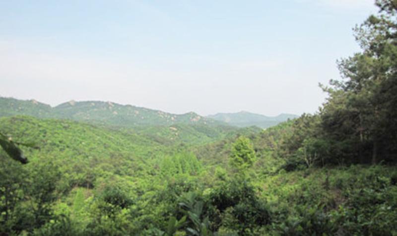 河南董寨国家级自然保护区