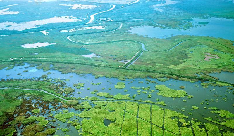 江西鄱阳湖景点图片