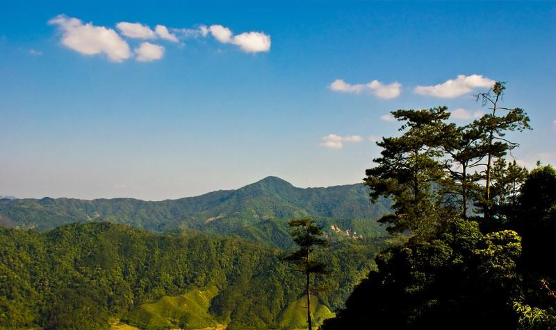 福建将乐龙栖山国家级自然保护区