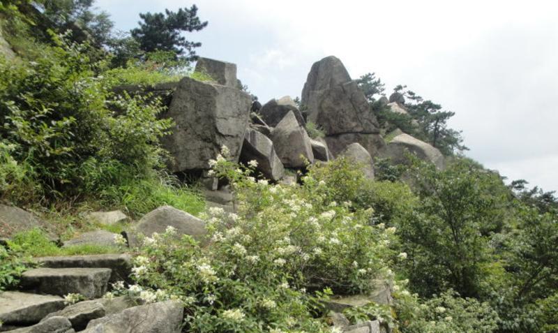 湖北挪步园 之 怪石嶙峋风景图片
