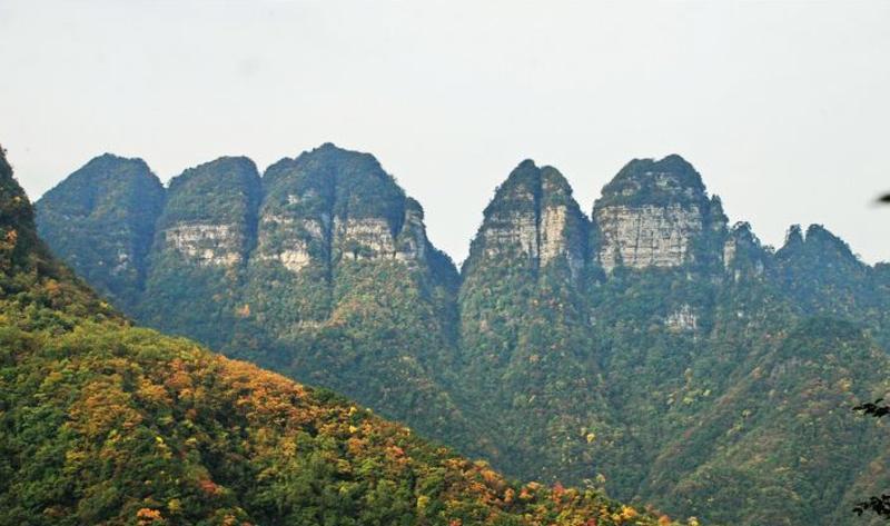 湖北七姊妹山国家级自然保护区