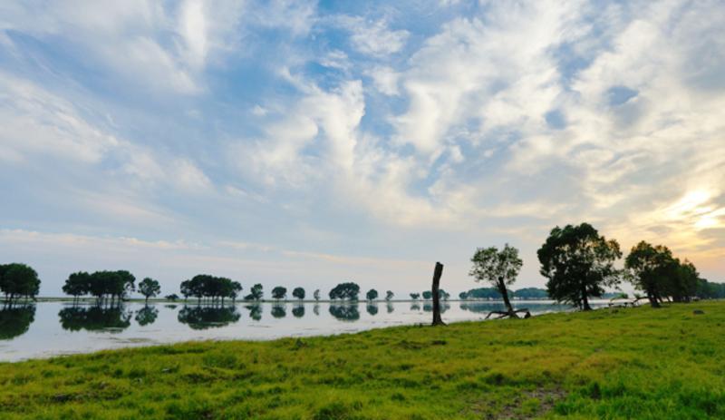 湖南东洞庭湖国家级自然保护区