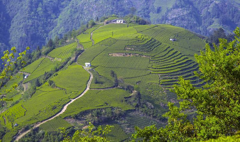 湖南壶瓶山国家级自然保护区