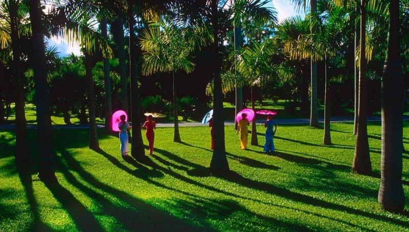 西双版纳热带花卉园景点图片