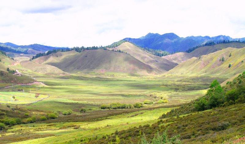 兰坪罗古箐风景点图片