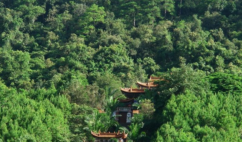 思茅小黑江森林公园景点图片
