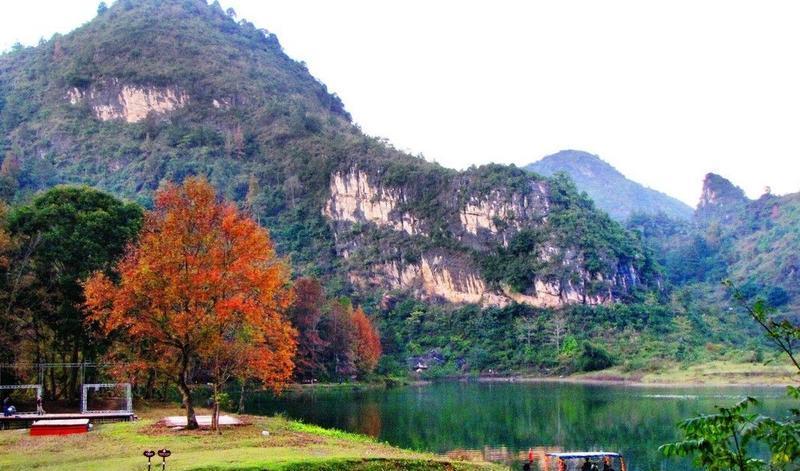 百色德保红叶森林公园的图片和照片