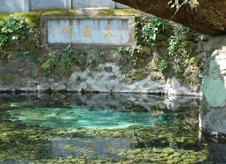 大理蝴蝶泉公园景点图片