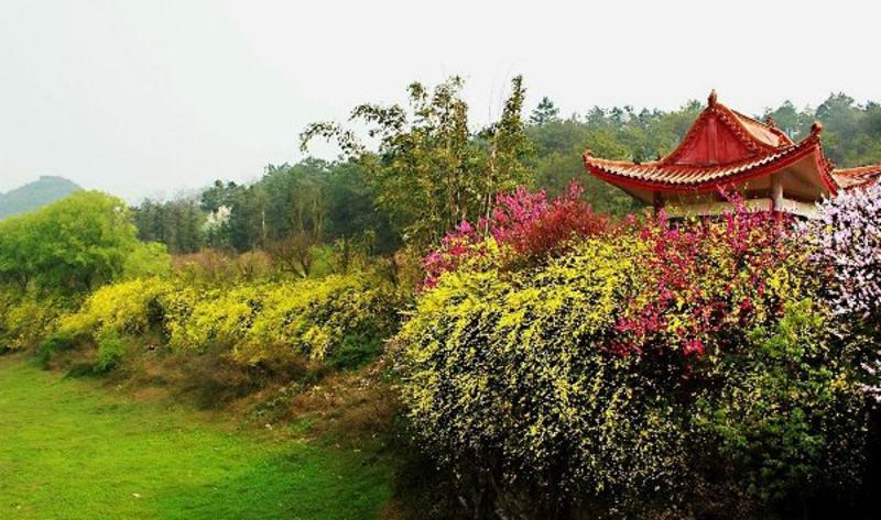 黔西南州贵州奇香园景点图片