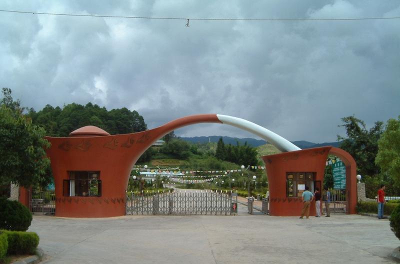 临沧茶文化风情园景点图片