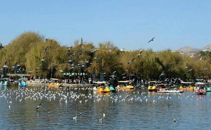 昆明翠湖景点图片