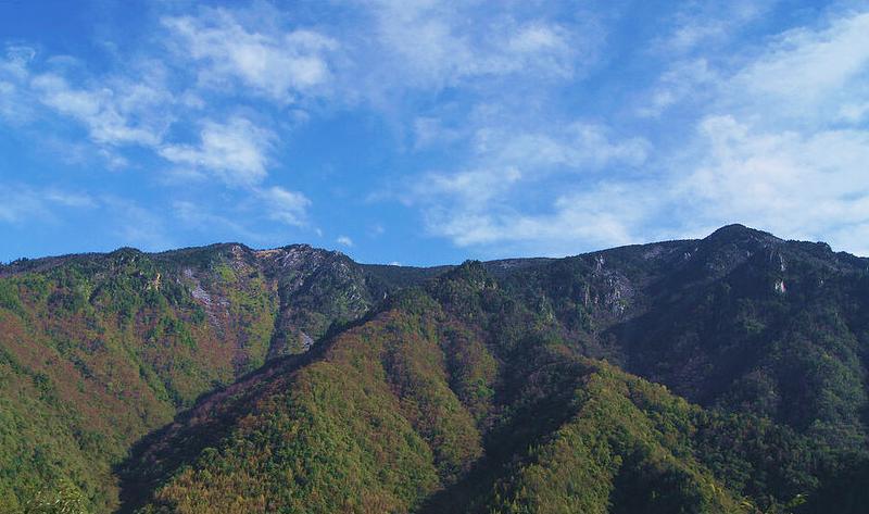 陕西周至国家级自然保护区景点图片