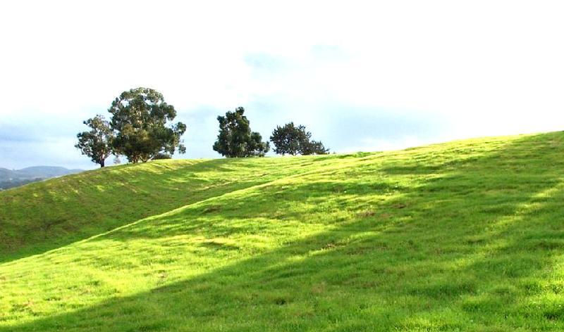 盘县坡上草原景点图片