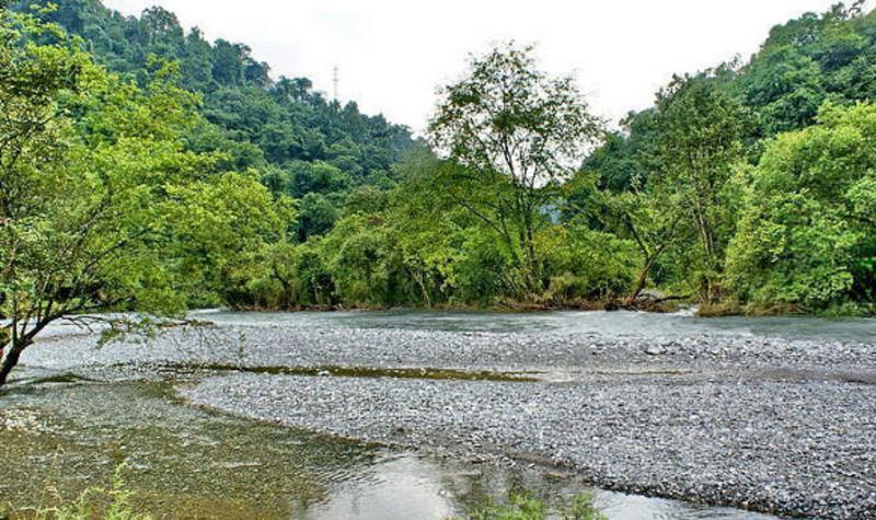 雅安喇叭河森林公园景点图片