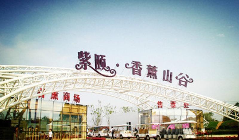 紫颐香薰山谷景点图片
