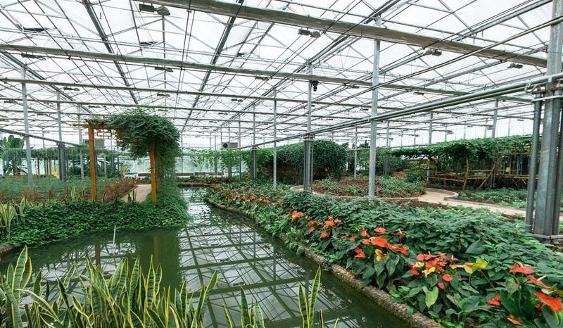 平昌驷马水乡旅游区 之 花木观赏园