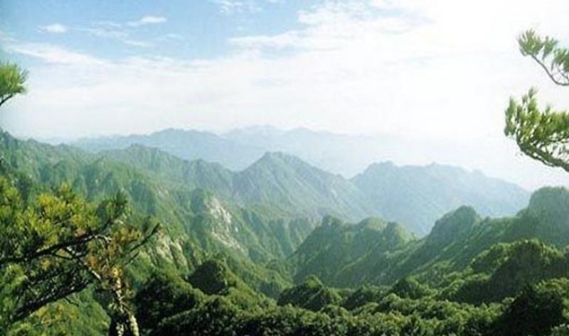 巴中南阳森林公园景点图片
