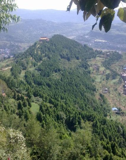 巴中平昌县佛头山森林公园景点图片