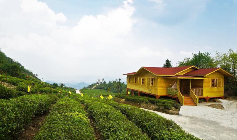 遵义湄潭茶海生态园景点图片