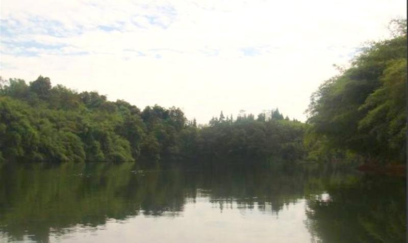 泸州凤凰湖风景点图片
