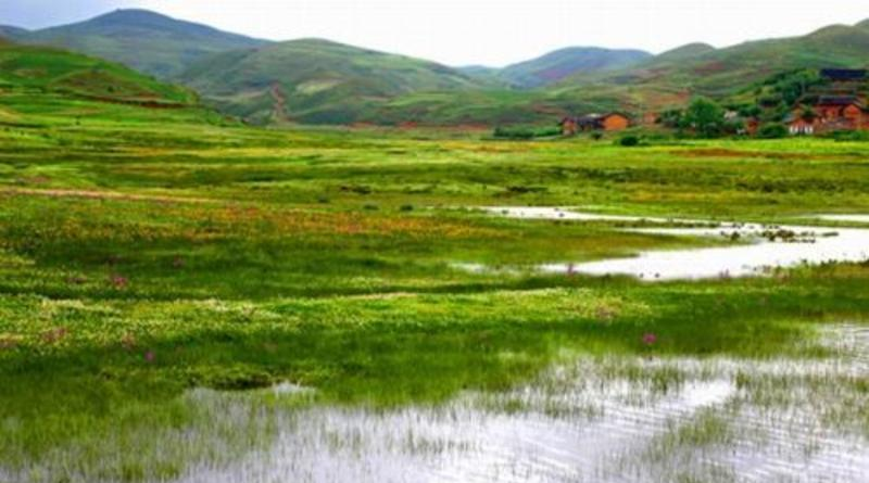 云南大山包黑颈鹤国家级自然保护区景点图片