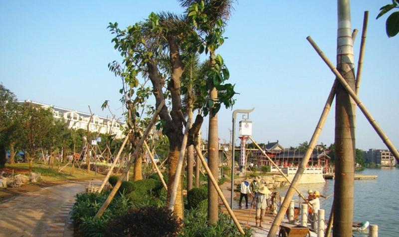 贵港东湖公园景点图片