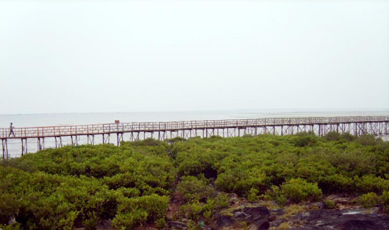 广西北仑河口国家级自然保护区景点图片