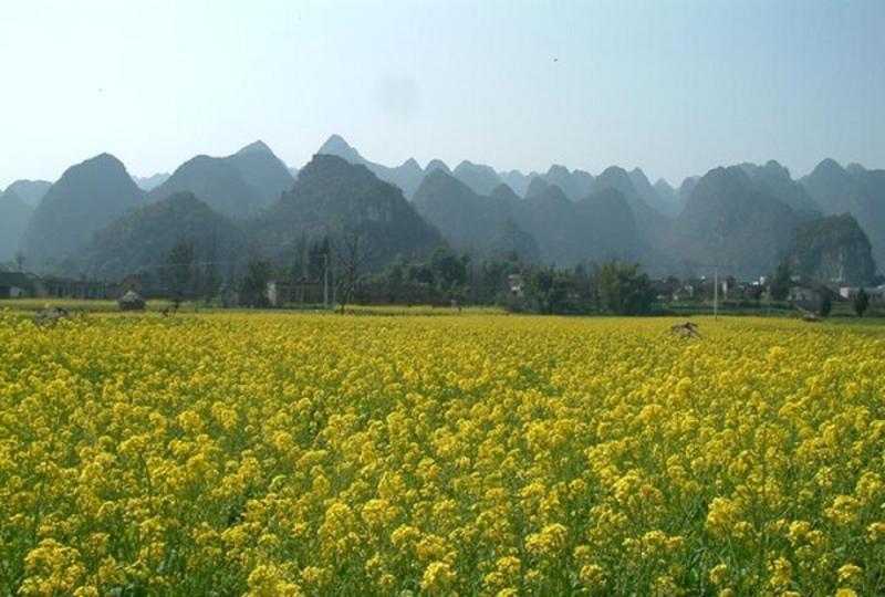 贵州兴义万峰林景点图片